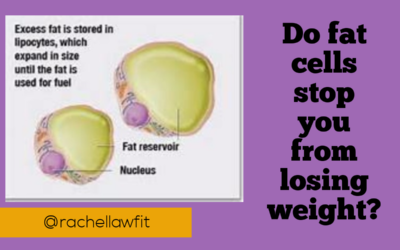 Do fat cells stop you from losing weight?